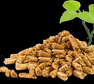 Pellets biocombustible